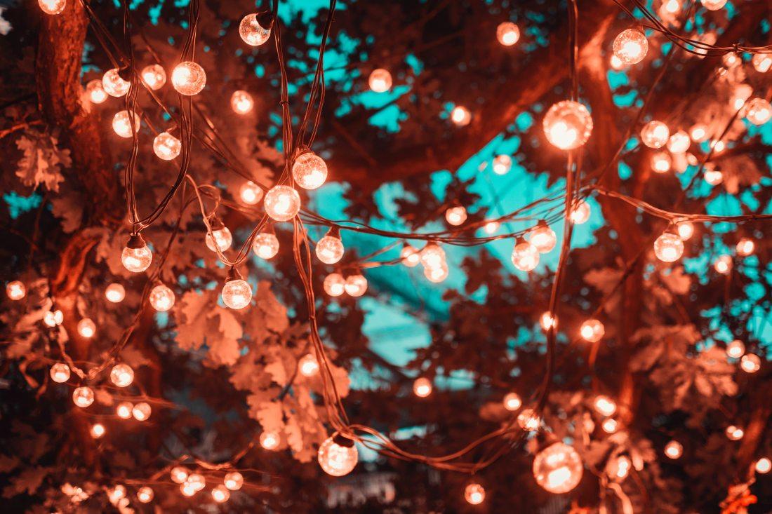 blur-bright-close-up-1124960