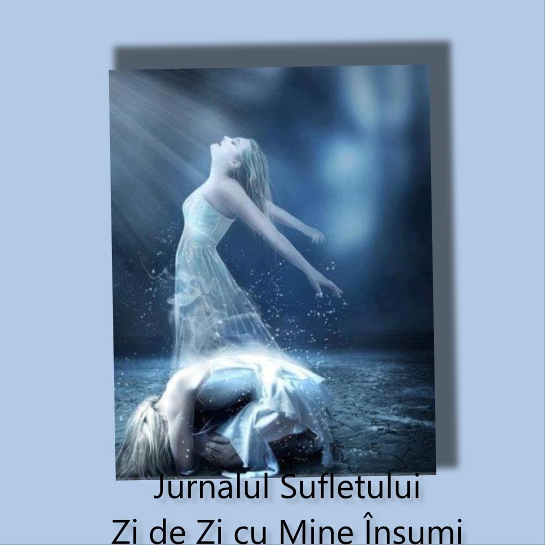jurnalul sufletului